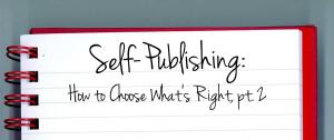 Sel-Publishing Post 4